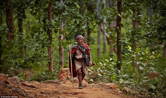 Những người Raute có khả năng săn bắn, hái lượm, đặc biệt có kỹ năng bẫy khỉ làm thức ăn. Hình ảnh một già làng trở về nhà sau một ngày săn bắn thành công.